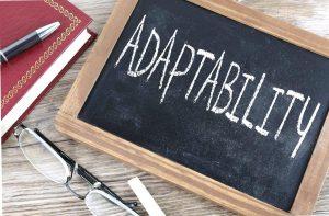 Adaptability Of Cloud Computing