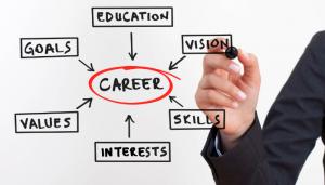 Utilize experianc and skills